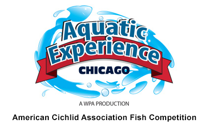aquatic experience