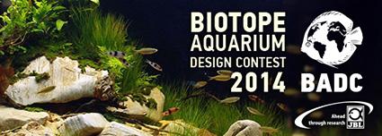 Biotope Aquarium Design