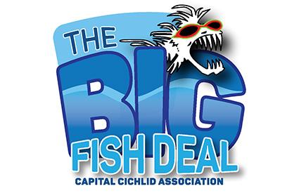 big fish deal