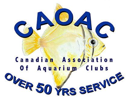 Canadian Association
