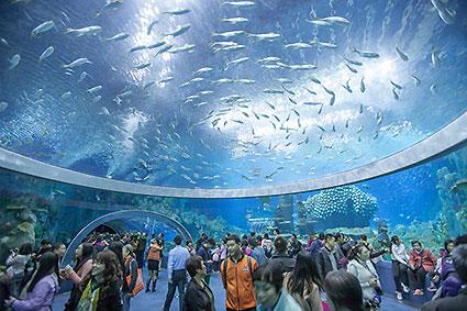 largest aquarium