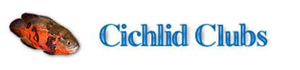 cichlid clubs