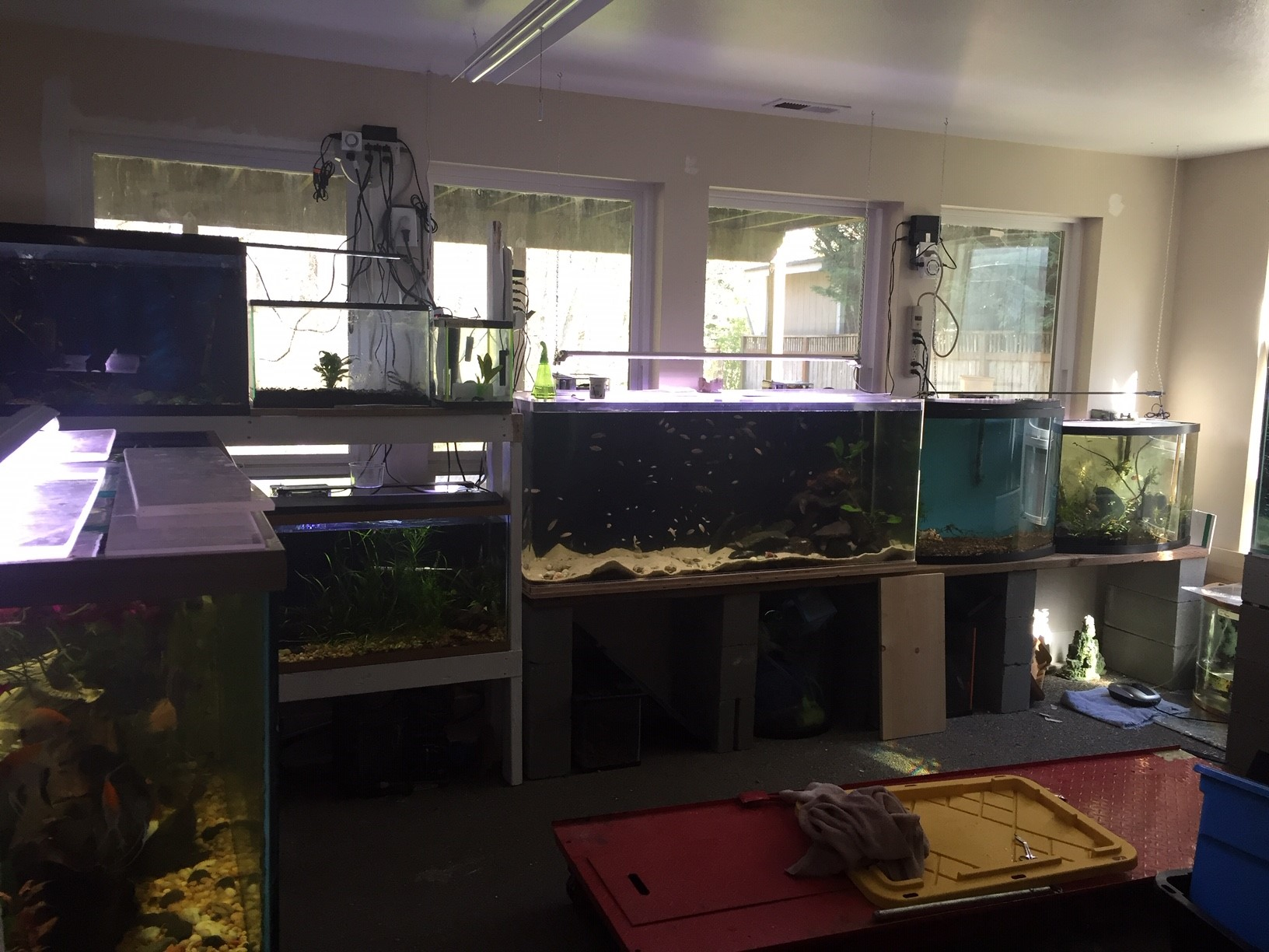 Fish_Room_Overview.jpg