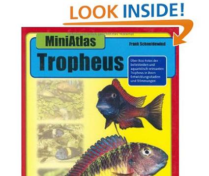 Miniatlas Tropheus