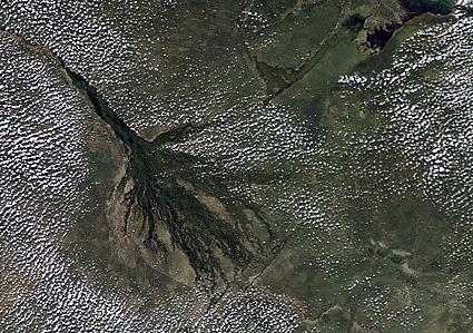 Cichlid Globetrotting - Okavango Delta